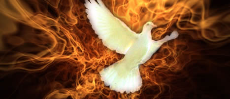 Dove of Fire